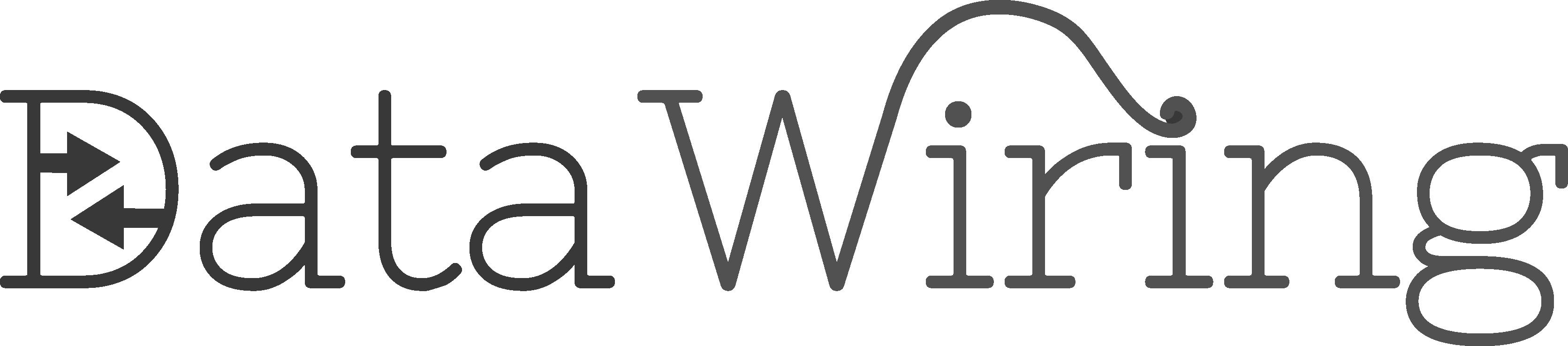 DataWiring Logo